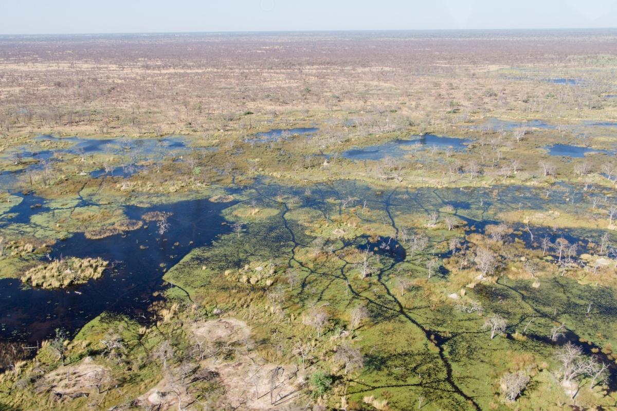 Over and around Maun – Okavango Delta fromabove